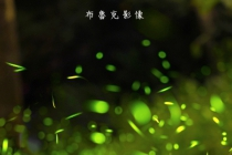 [攝影旅遊] 2015.04.18(六) 翠湖火金姑攝影團